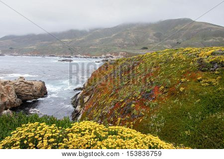 Foggy Coastline of the Pacific Ocean. Garrapata State Park, Big Sur, California, USA