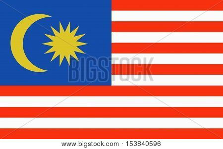 Malaysia Flag for Independence Day and infographic Vector illustration.