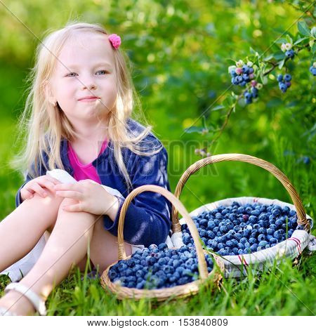 Cute Little Girl Picking Fresh Berries On Organic Blueberry Farm