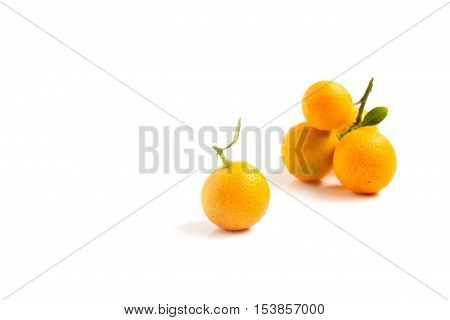 Orange Kumquat is placed on whte background