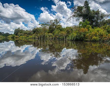 Lagoon Of Jaguar