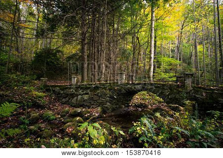 Wonderland. Historic bridge abandoned in the forests of the Smoky Mountains in the Elkmont Historic District. Gatlinburg, Tennessee.