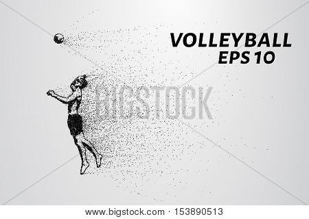 A volleyball of particles. A silhouette of a volleyball player consists of small circles and dots.