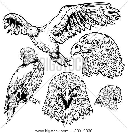 Eagle monochrome tattoo set with sitting and flying bird and head with proud look isolated vector illustration