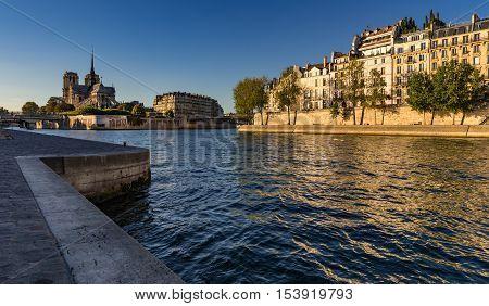 Notre Dame de Paris and the banks of the Seine River  (Quai d'Orleans) at sunset in Summer. Ile Saint Louis and Ile de la Cite, 4th Arrondissement, Paris, France
