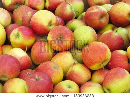 Red And Yellow Organic Apples Background