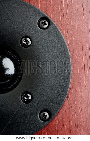 Close Up Of A Black Tweeter From Home Audio Speakers