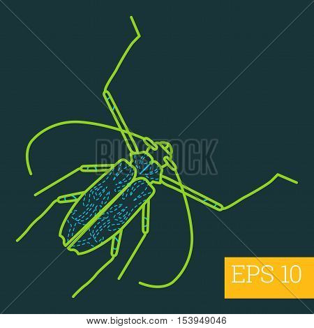 Cerambycidae Insect Outline Vector