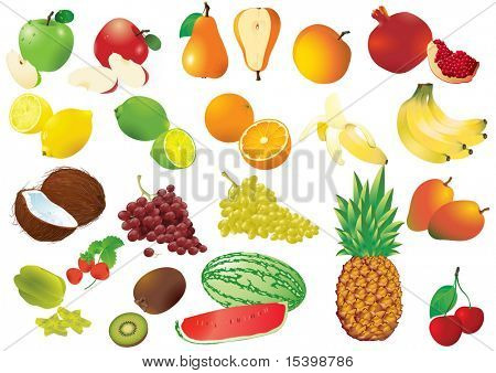 Giant set of vector fruits. Clear, nice and detailed