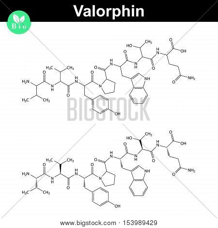 Valorphin biochemical compound icons endogenous opioid peptide 2d chemical vector icon isolated on white background eps 8
