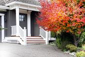 Beautiful upscale house in Canada with a Maple leaf tree next to the front door. Also available in h poster