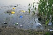 picture of water pollution  - Polluted lake - JPG