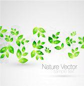 stock photo of green leaves  - Vector green leaves background - JPG
