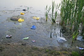 stock photo of water pollution  - Polluted lake - JPG