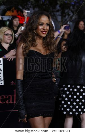 LOS ANGELES - NOV 14: Dania Ramirez at the World Premiere of 'The Twilight Saga: Breaking Dawn Part 1' held at Nokia Theater L.A. Live on November 14, 2011 in Los Angeles, California