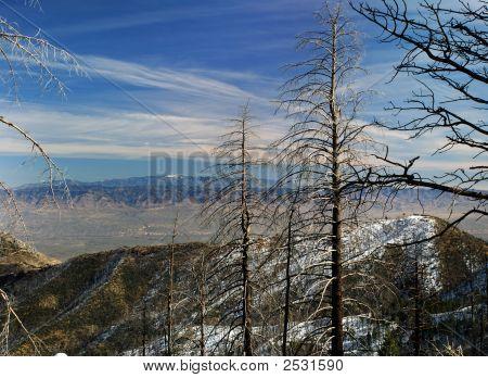 Vast Mountain View