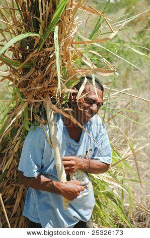 Fijian Man carrying a bundle of reed