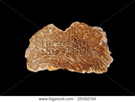 White Truffle's Texture
