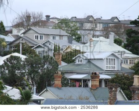 Houses On An Auckland Hillside