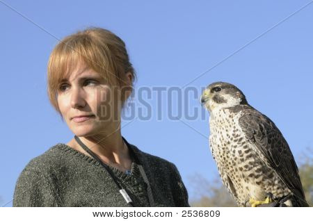 Falcon And Handler