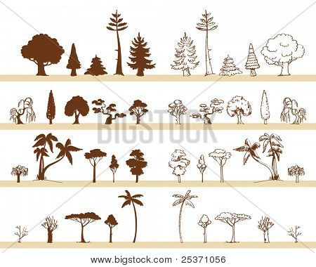 tree vector drawings different species