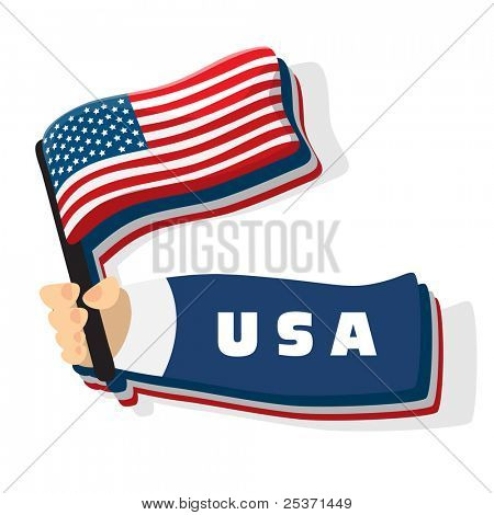 US American flag vector icon