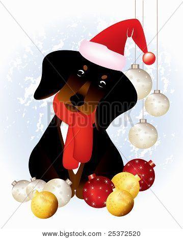 Puppy in Christmas attire