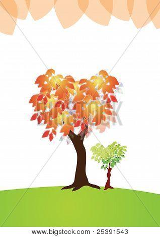 Birthday, Tree