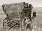 image of horse plowing  - antique wood wagon in sepia tones - JPG