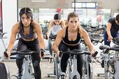 Serious Determined Women Exercising On Stationary Cycles In Health Club poster