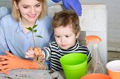 Planting Flower. Gardening. Planting. Mom With Son Planting Flower In Flowerpot. Cute Boy Helps Moth poster