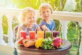 Children Drink Colorful Healthy Smoothies.. Watermelon, Papaya, Mango, Spinach And Dragon Fruit. Smo poster