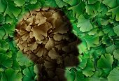Concept Of Alzheimer Disease With A Ginkgo Biloba Leaf Background And A Human Head Representing The  poster