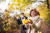 Senior Couple On A Walk In A Forest In An Autumn Nature, Holding Leaves. poster