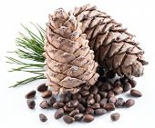 Pine nut cones and pine nuts on the white background. Organic food. poster