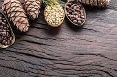 Pine nuts in the spoons and pine nut cone on the wooden table. Organic food. poster