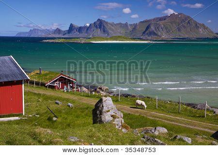 Panorama On Lofoten