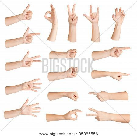 Set Of Gestures Hand