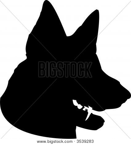 Dog Head - German Shepherd