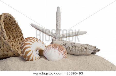 Seashells, Starfish And Sand On White Background