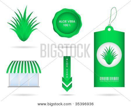 Special Aloe Vera Design Elements