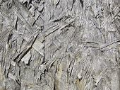 Grunge Background Wood Texture