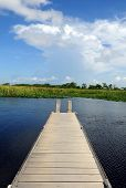 stock photo of dock a pond  - Scenic view of dock on lake or swamp - JPG