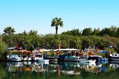 picture of dalyan  - Dalyan river in a Turkey turkish asia - JPG