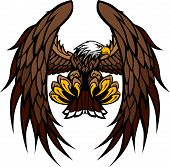foto of hawk  - Flying Eagle with Wings and Talons Graphic Mascot Vector Image - JPG