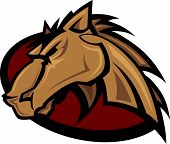 stock photo of broncos  - Vector Graphic Mascot of a Mustang Bronco Horse - JPG