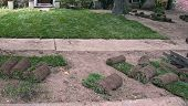 stock photo of fescue  - Sod being put over bare ground to quickly establish a new lawn - JPG