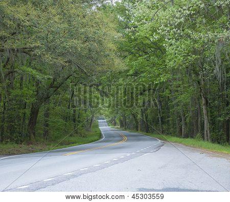 Sheldon Highway
