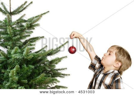 First Tree Decoration