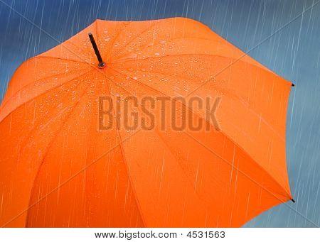 Guarda-chuva na chuva
